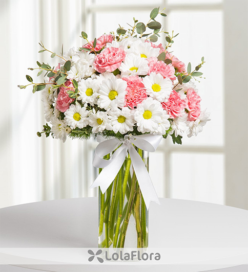 Daisies and carnations