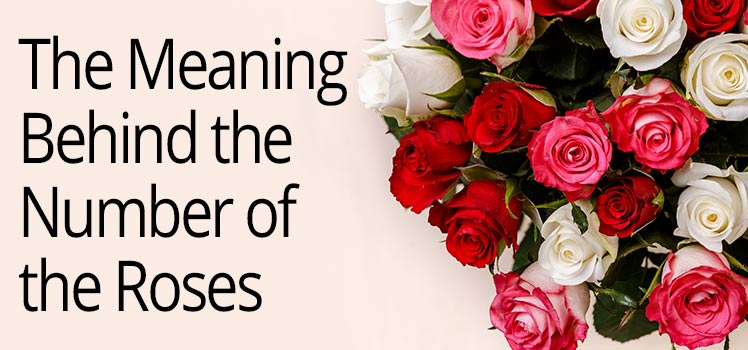 Learn Now About The Specific Meanings Behind Rose Numbers