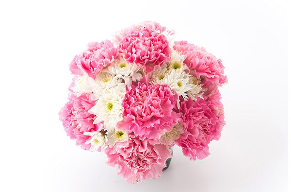Valentines Day Carnations