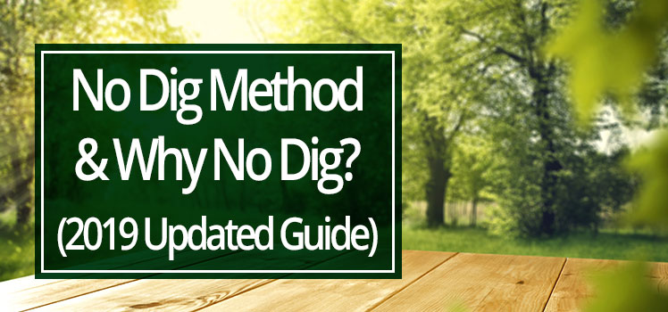 No Dig Method 2